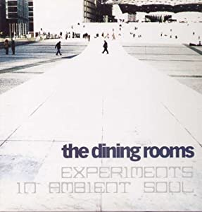 Experiments in Ambient Soul [Vinyl]