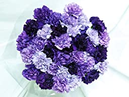 140 Fresh-cut Mixed Purple Carnations (advance ordering recommended)