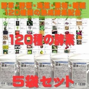 濃縮 酵素サプリメント 60粒×5袋 120種類の植物酵素配合 持ち運び便利なミニパッケージ