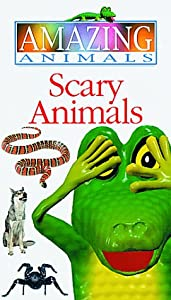 Amazon.com: Scary Animals (Amazing Animals): Henry the lizard: Movies