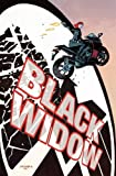 img - for Black Widow Vol. 1: S.H.I.E.L.D.'s Most Wanted book / textbook / text book