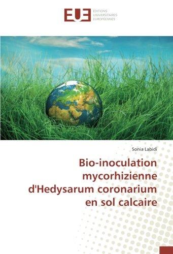 bio-inoculation-mycorhizienne-dhedysarum-coronarium-en-sol-calcaire