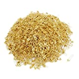 Dealglad Small Safety Pins Gold Bulk for Clothes Quilting Sewing Fastening Garment Hang Tags Jewelry Making, 19mm Metal (2000Pcs) (Color: Gold, Tamaño: 2000Pcs)