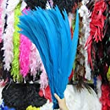 Maslin 50pcs 40-50CM/long Silver Pheasant Tail Feathers Wedding Decorations Lady Amherst Apple Green Silver Chicken Feathers - (Color: Blue) (Color: blue)