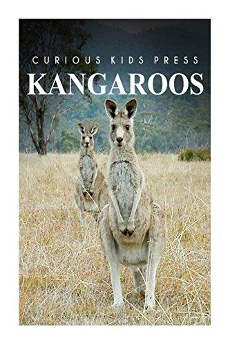 Kangaroo - Curious Kids Press