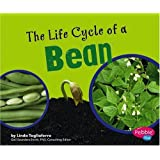 The Life Cycle of a Bean (Plant Life Cycles)