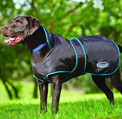 """Kennel Deluxe Dog Blanket Jacket In Yellow And Black Size: 28"""""""