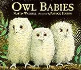 Acquista Owl Babies