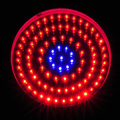 LEDwholesalers 2506MX Blue/Red 90 x 1 Watt LED High Power Round Grow Light