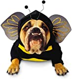 Paper Magic Group Zelda Bumblebee Pet Costume in 3 Sizes Picture