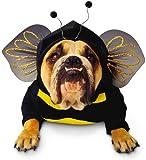 Paper Magic Group Zelda Bumblebee Pet Costume in 3 Sizes