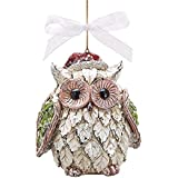 Santa Owl Christmas Ornaments - Holiday Ornament Gift Decor (1)
