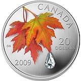 カナダ メープルリーフ銀貨<秋時雨の水晶の雫>CC1S90049