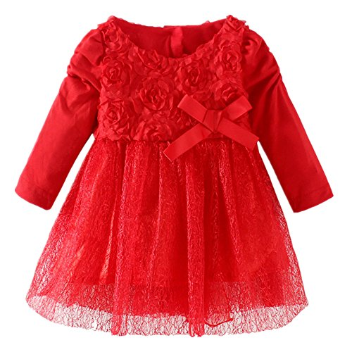 LittleSpring Baby Girls' Dresses Flowers Princess Size 24M Red
