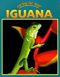 Caring For Your Iguana (Caring for Your Pet)