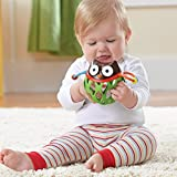 Skip Hop Explore and More Roll Around Toy, Owl