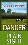 Danger in Plain Sight: An Amish Suspense Novel