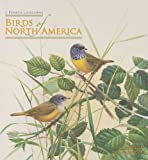 Birds of North America: J. Fenwick Lansdowne 2011 Wall Calendar (076495279X) by J. Fenwick Lansdowne