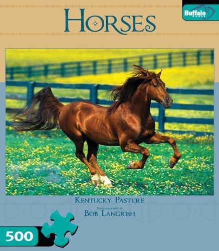 Horses-Kentucky-Pasture