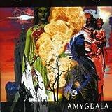 Amygdala by Amygdala (2008-05-20)