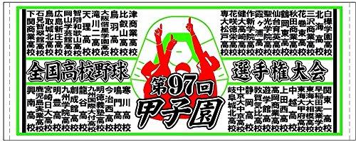 2015  第97回夏の甲子園 校名入りフェイスタオル