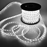 Flexible 150' LED Crystal Clear PVC Tubing Rope Light Indoor/Outdoor Boat Decorative Party Christmas Holiday Business Restaurant Light Kit 110V/60Hz Customizable Length (Cool White)