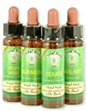 10 ml White Chestnut Bach Flower Remedy