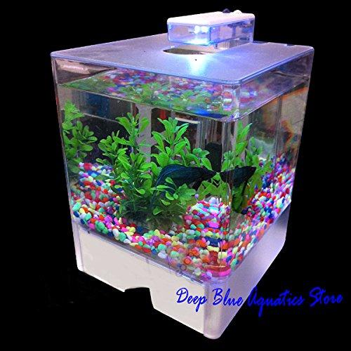 Perfect New Fish Tank Aquarium Betta Aquarium Dual Light-daylight Usb Power Cord 3L (Betta Fish Cube compare prices)