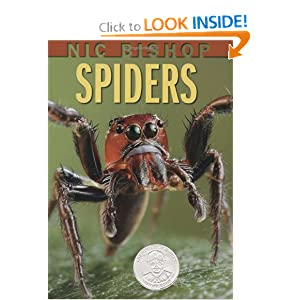 Nic Bishop Spiders (Sibert Honor Book)