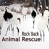 Rock Back: Animal Rescue V.1