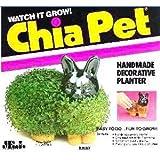 Chia Pet Pet - Bunny 1 ea