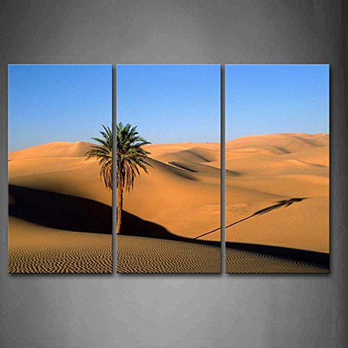 Quiet Desert Without Plants Except For Palm Wall Art Painting Pictures Print On Canvas Landscape The Picture For Home Modern Decoration