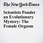 Scientists Ponder an Evolutionary Mystery: The Female Orgasm | Carl Zimmer