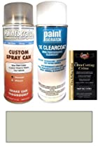 1995 Nissan Sentra Yellow Silver Metallic KN4 Touch Up Paint Spray Can Kit - Original Factory OEM Automotive Paint - Color Match Guaranteed