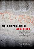 img - for Methamphetamine Addiction: Biological Foundations, Psychological Factors, and Social Consequences book / textbook / text book