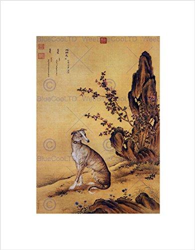 animal-castiglione-prized-dogs-banjinbiao-greyhound-framed-print-b12x12751