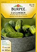Burpee 50636 Cucumber Pickle Barrel Seed Packet