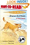 Brave Norman : A True Story