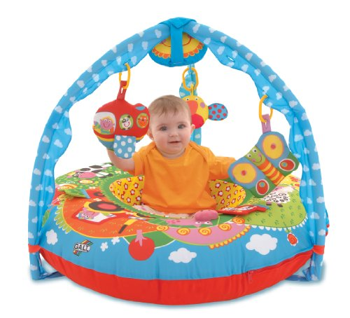 Galt Toys Inc First Years Farm Playnest And Gym