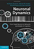 img - for By Wulfram Gerstner Neuronal Dynamics: From Single Neurons to Networks and Models of Cognition [Paperback] book / textbook / text book