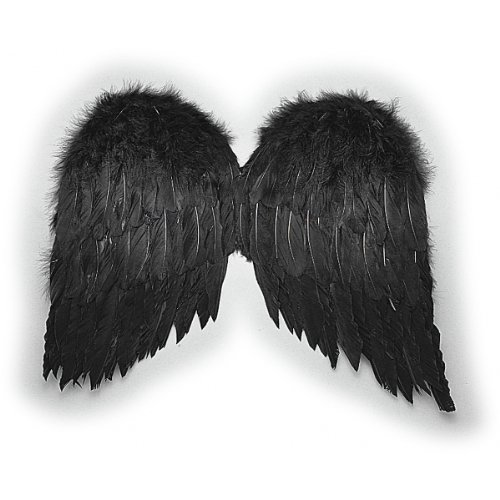 Feather Wings (black) 20in Economy Halloween Costume Accessory