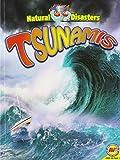 Tsunamis (Natural Disasters)