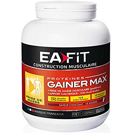 Eafit Gainer Max Weight Gain 1.1kg - Flavour : Chocolate