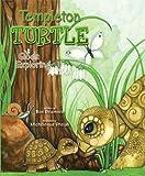 Templeton Turtle Goes Exploring
