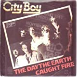 Day The Earth Caught Fire 7 Inch (7