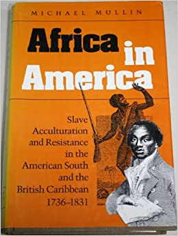 slave acculturation Africa in america: slave acculturation and resistance in the american south and  the british caribbean, 1736-1831 (blacks in the new world) [michael mullin].