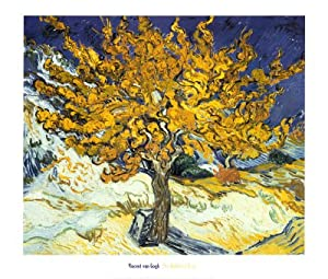 Mulberry Tree, c.1889 Art Poster Print by Vincent van Gogh, 28x24 Art Poster Print by Vincent van Gogh, 28x24