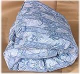 京都西川ハンガリー産ダックダウンブルー羽毛布団シングルロングサイズ2層キルト2層構造・ダウンパワー390