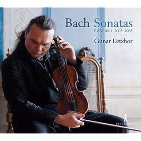 Violin Sonata No. 1 in G minor, BWV 1001: II. Fugue: Allegro