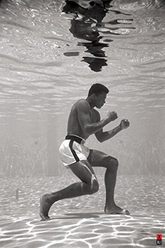 Ali Underwater Wall Poster